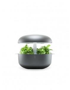 Plantui 6 Smart Garden Grigio