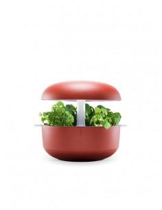 Plantui 6 Smart Garden Rosso