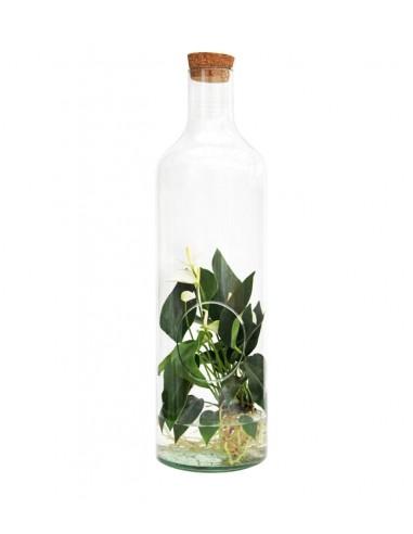 Anthurium bianco in vetro