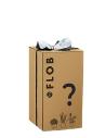 Mistery Box Jungle
