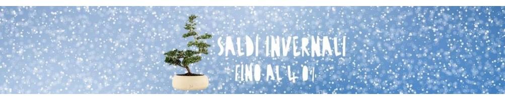 SALDI SALDI FLOB